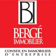 Logo BERGE IMMOBILIER